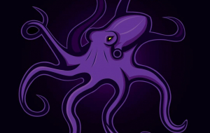 Cephalopod Wallpapers HQ