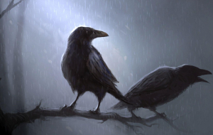 Crows Beautiful Wallpaper