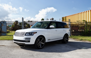 Land Rover Range Rover Sport 2020 White Wallpapers HD
