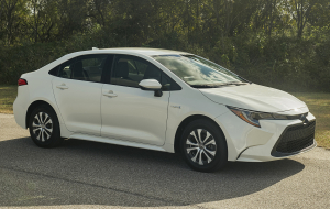 Toyota Corolla 2020 Gray Images