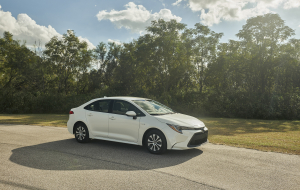 Toyota Corolla 2020 Gray Wallpapers For IPhone