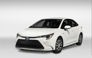 Toyota Corolla 2020 White In HQ